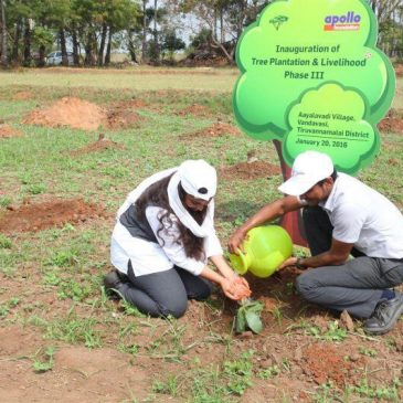 The Apollo Tyres Ltd Afforestation project has